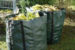 Gartenabfälle wie Laub und Baumschnitt sollte man jetzt ebenso überall im Garten einsammeln und gut entsorgen. (Foto: pixabay)