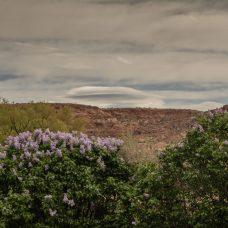 Lenticular Cloud over mountain?