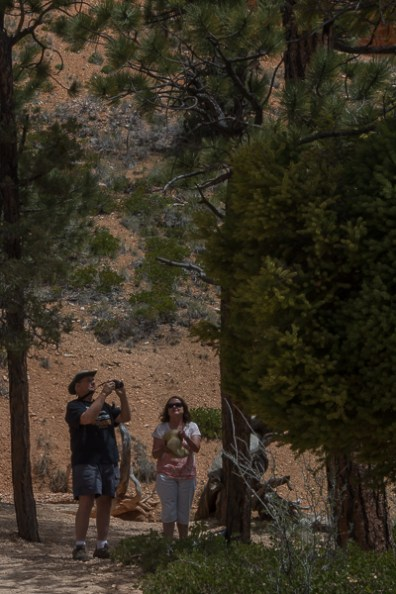 Avid hikers