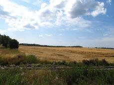 Randzonen er høstet - det var det bedste stykke