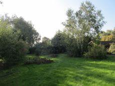 Græsset er tykt og blød (og meget vådt selv om eftermiddagen - det er så langt at det holder på duggen)