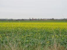 Det gule sted (2) set mere mod nordøst