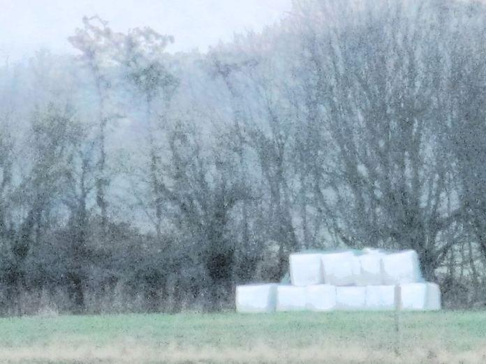 Wrapballer ved det levende hegn
