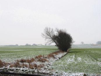 19. Januar, lidt sne