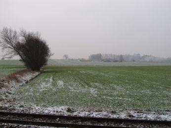 19. Januar - pænt grøn trods sne