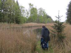 Den romantiske skovsø blev engang brugt til at vaske får inden de blev klippet