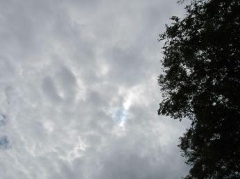 De tynde skyer lader mig se solens skive uden at blive blændet, - men jeg kan ikke fange den med kameraet (den er lidt til højre ned for midten)