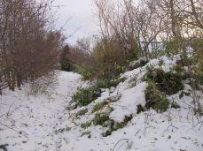 Den klistrede sne havde lagt sig som dyner på træerne og flere steder var grene knækket