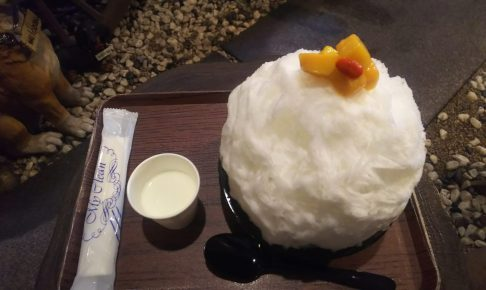 富士宮市 かき氷 天竺屋 ダヤンテールblog