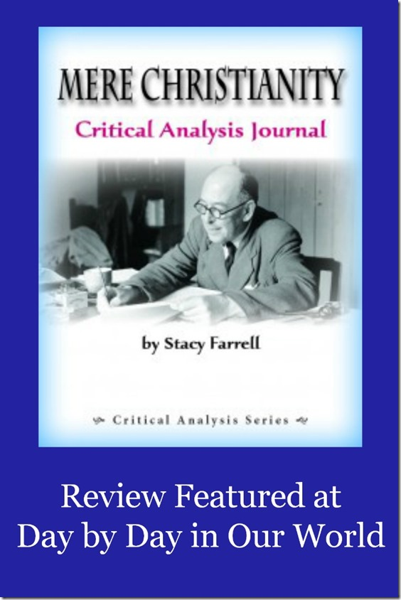 Mere Christianity Critical Analysis Journal  Day By Day
