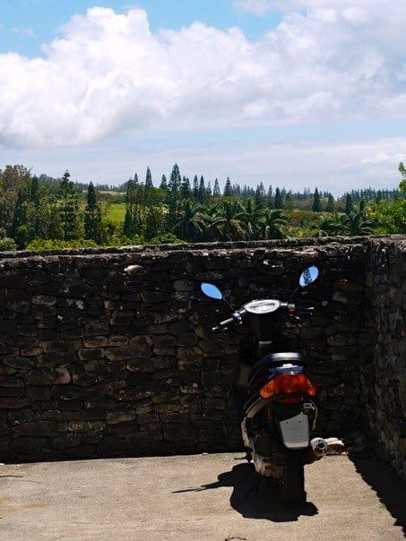 maui-bike