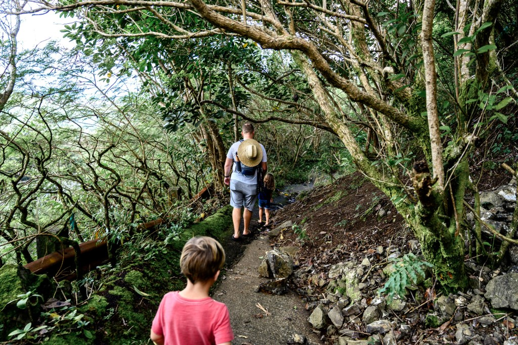 mountain view family hike old Pali highway oahu hawaii adventure kids