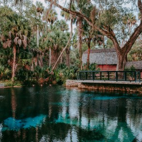 family friendly florida spring juniper springs ocala