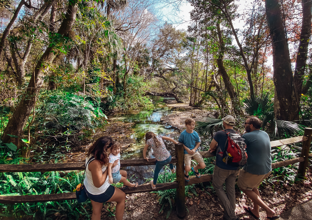 family friendly florida springs rainbow springs state park with kids