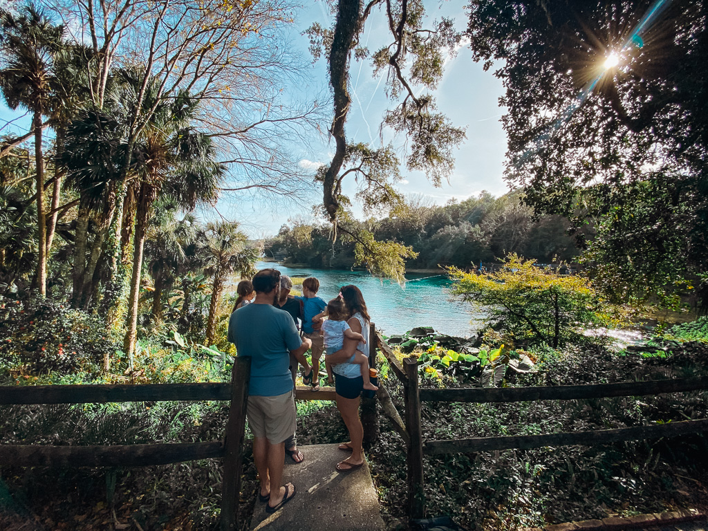 family florida vacation destination rainbow springs with kids