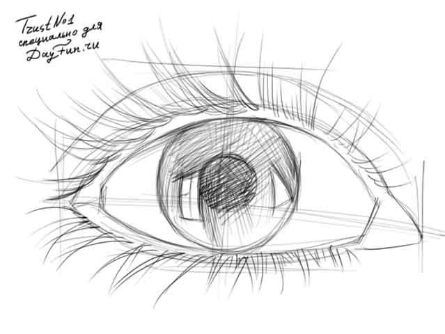 Come Disegnare Un Occhio In Più Fasi Sai Come Disegnare
