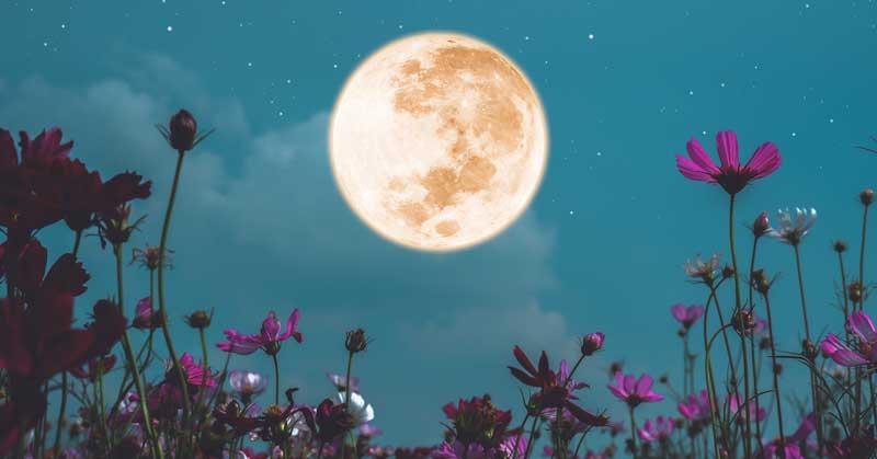 June Solstice and Capricorn Full Moon