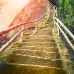 Golden Capricorn Steps to Mastery January 2018