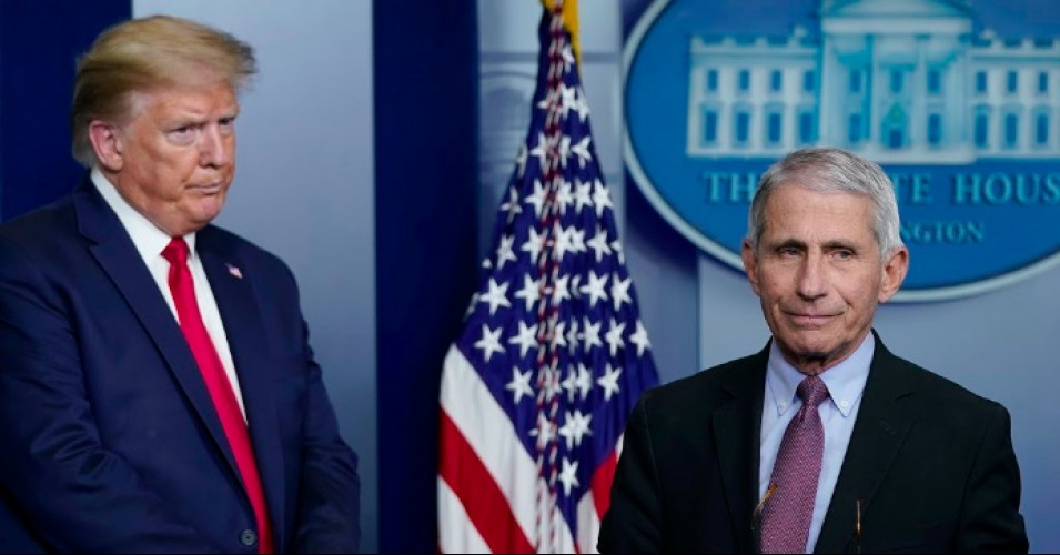 Coronavirus update, Predident Trump and Anthony Fauci