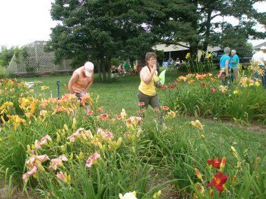 Rosewood Garden