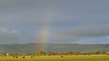 Bit of a rainbow