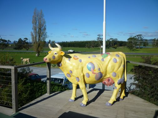 Holey Cheese Cow!