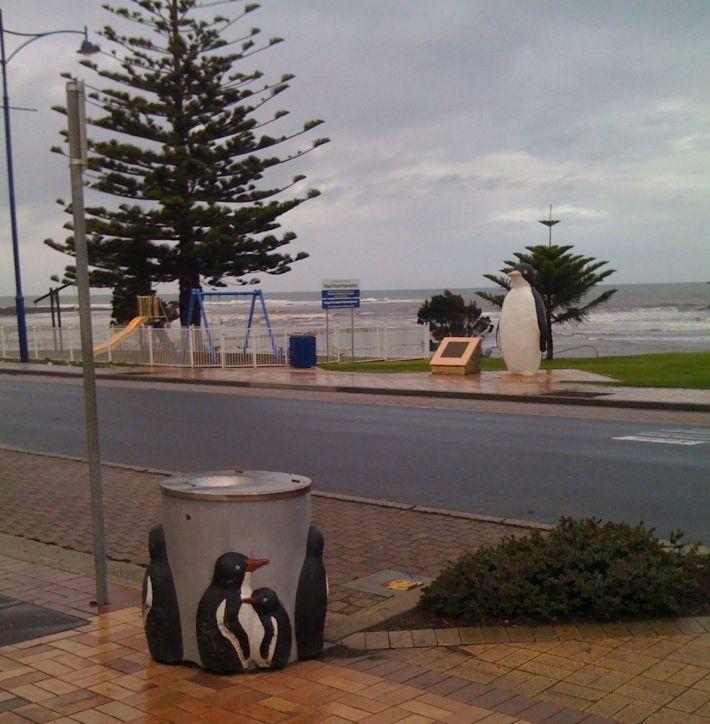 Penguins at Penguin