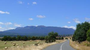 Ben Lomond Plateau