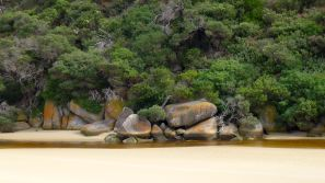 Rocks in Tidal River