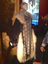 Silver dress & velvet coat