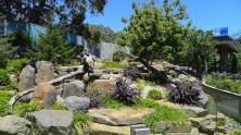 Giant Panda enclosure - Funi's half