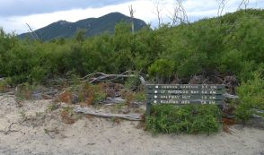 The sign on the opposite side of Telegraph Track where Oberon Bay Walking Track starts/ends