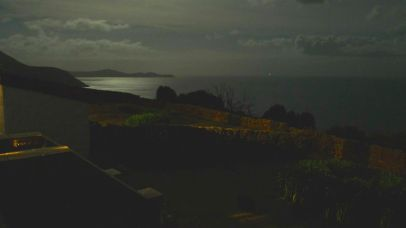 You can just make out the mother wombat & young near the light in the garden