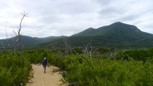 4/8 The path is now very sandy and exposed as we walk the last section to Telegraph Track