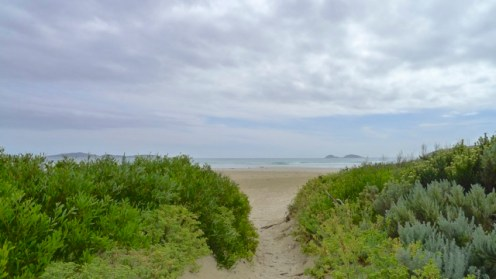 1/12 Finally! Back to Oberon Beach!