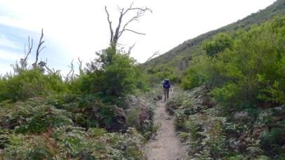 1/13 Walking up the path around the headland from Growler Creek, Oberon Beach