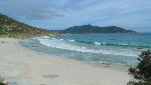 13/13 The tide is out at Little Oberon Bay