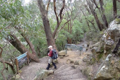 Dardanelles Pass meets Federal Pass Walking Track