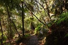 Giant Stairway meets Darndanelles Pass Walking Track