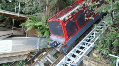 Most people looked like they had fun on the Scenic Railway - there weren't any screams of terror
