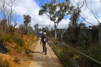 Returning to Echo Point on the Prince Henry Cliff Walk