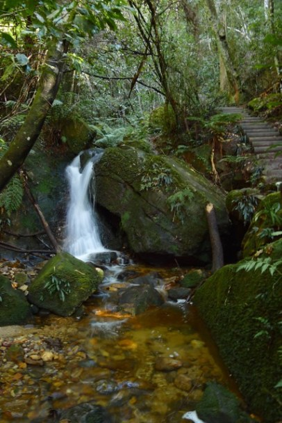 Lower end of Marguerite Cascades and start of walk up towards Leura township