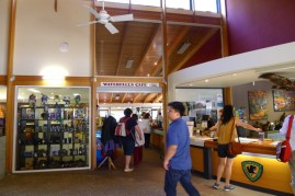 Inside the Visitor Centre at Mt Field National Park