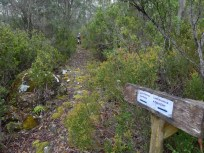 To the left is a steep path down to Dobson Road, while the track turns back up the hill