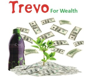 8 WAYS TO MAKE MONEY FROM TREVO IN NIGERIA