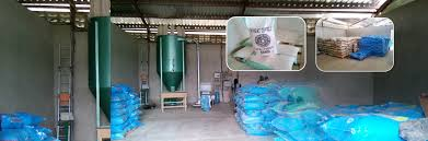 FEED MILL BUSINESS PLAN IN NIGERIA 4