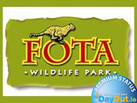 days out in cork - fota wildlife