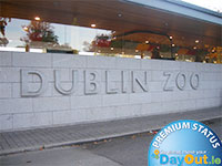 days out in dublin - dublin discovered boat tours