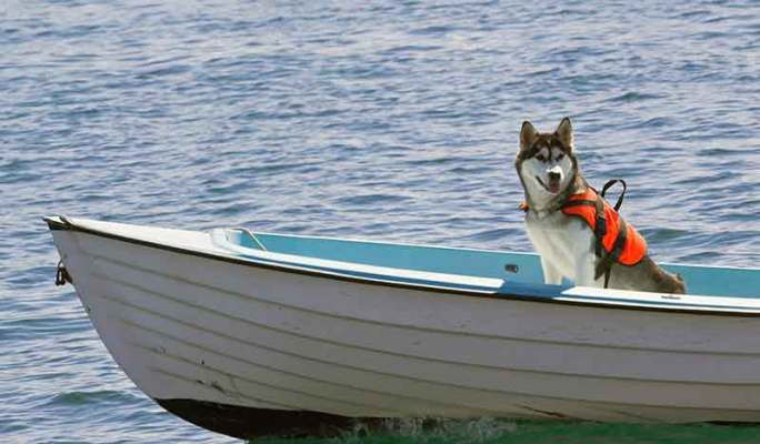 Basic Boating Safety Tips