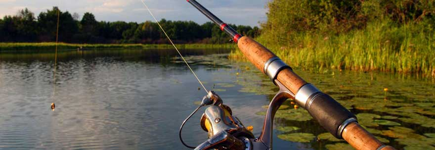 Forward Casting Fishing Rod